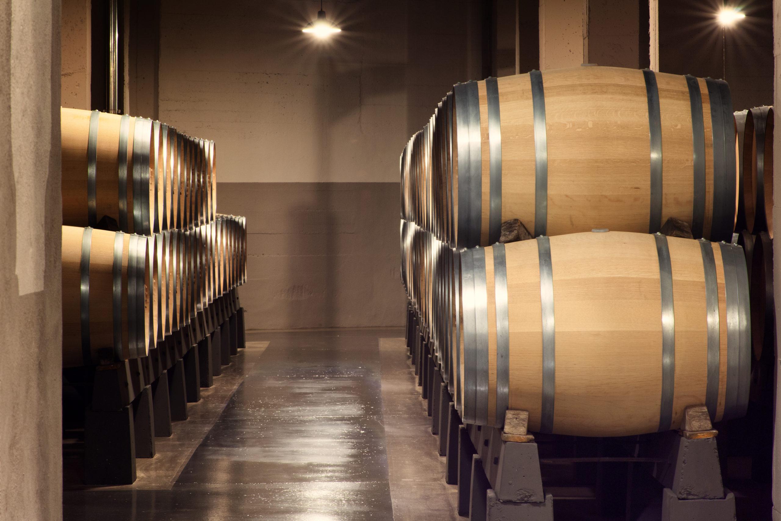 Diferencias entre vinos tintos según su crianza